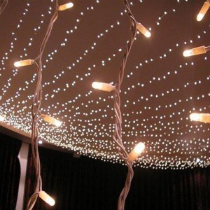 Fairy Light Hire in Surrey